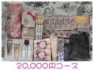 資生堂・dプログラム・ベネフィーク福袋20,000円コース景品プレゼント