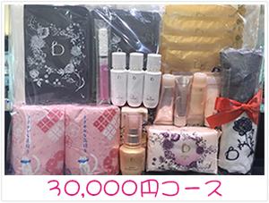 資生堂・dプログラム・ベネフィーク福袋30,000円コース景品プレゼント